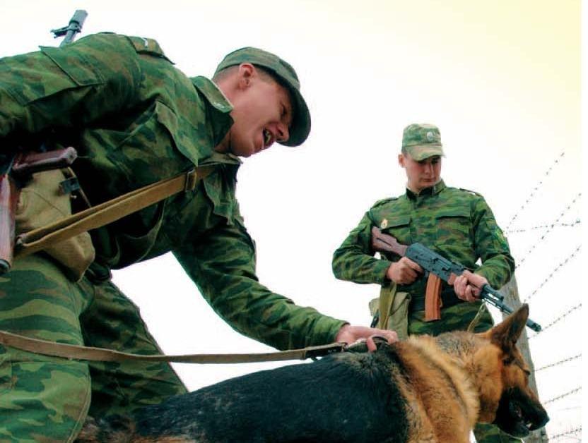 Задержан нарушитель государственной границы, который ранее распространял наркотики в Алтайском крае