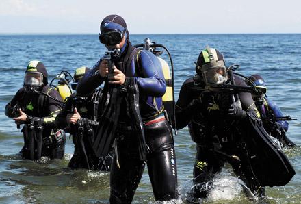 Разведывательная группа дельфин