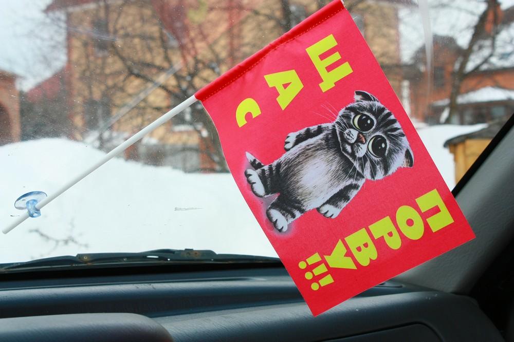 Флажок в машину с присоской Щас порву