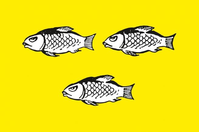 Флаг Нового Оскола