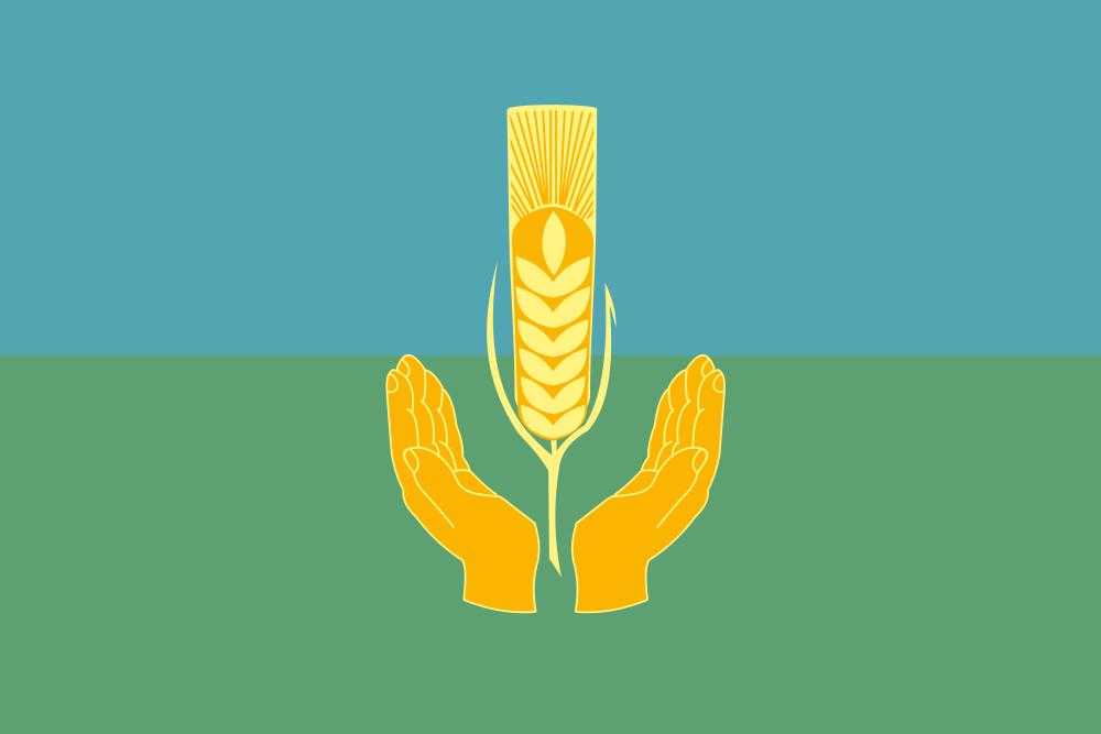 Флаг Похвистневского района