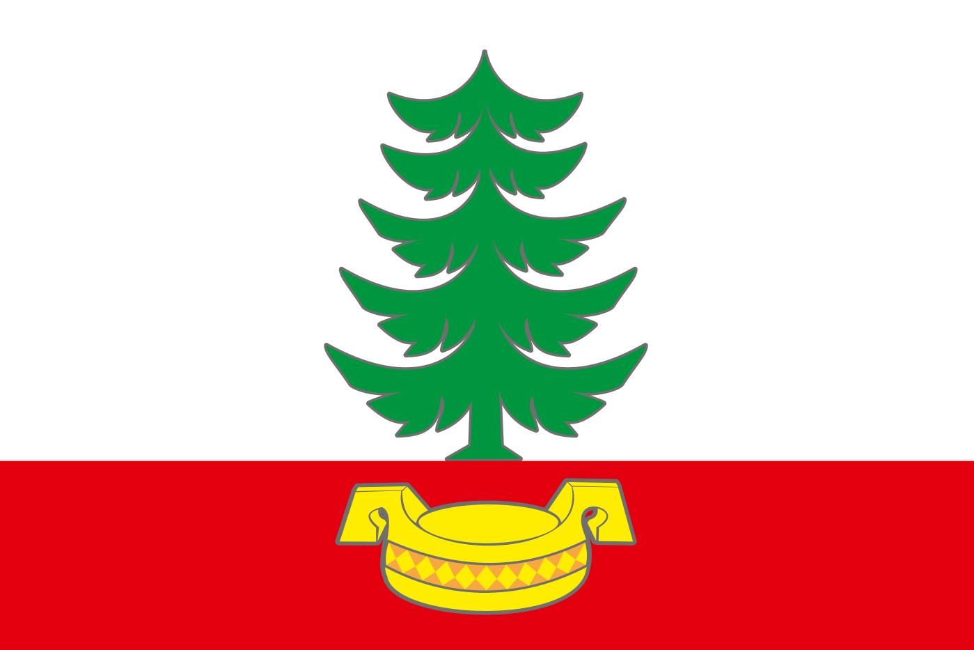 Флаг Правдинского