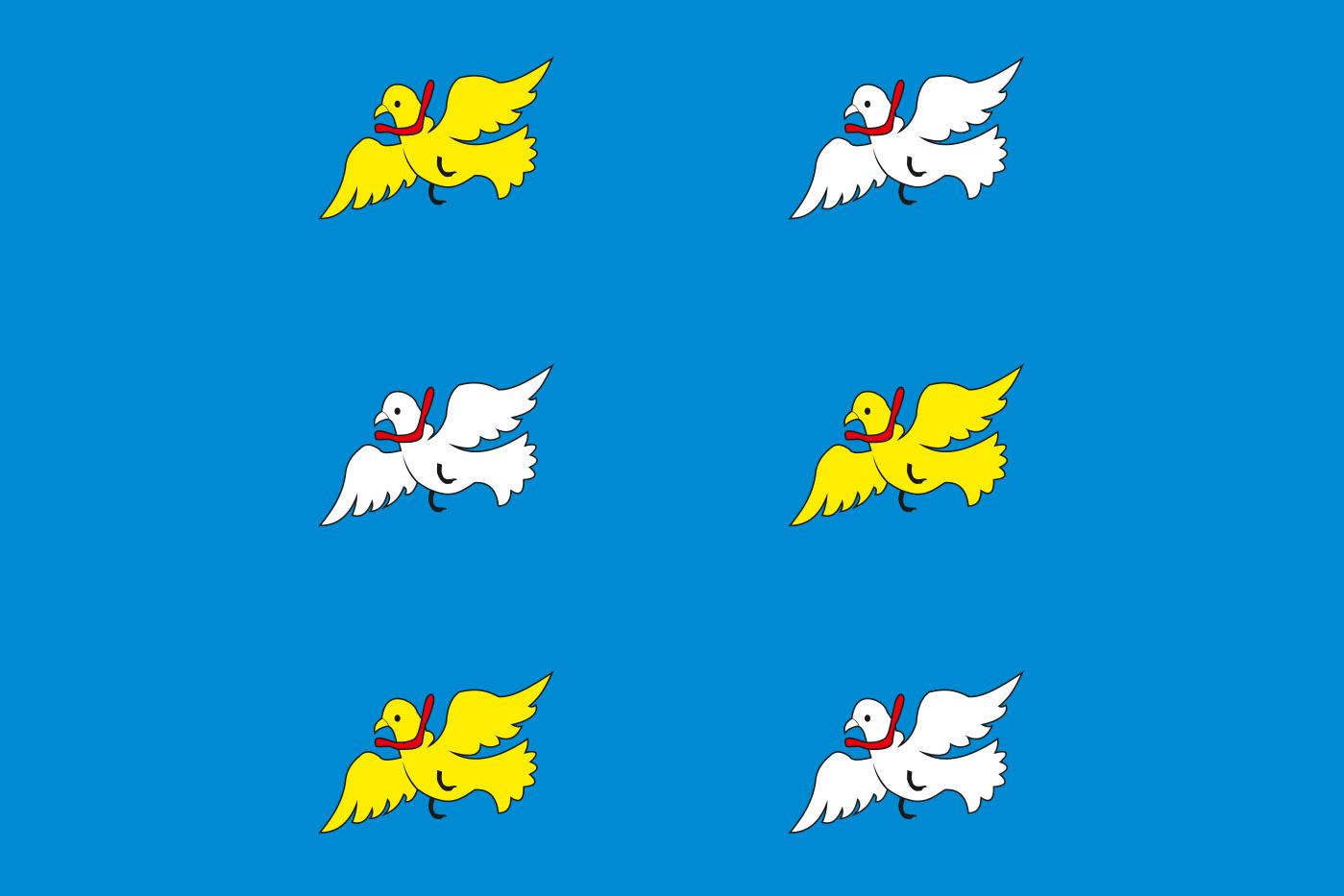 Флаг Торжка