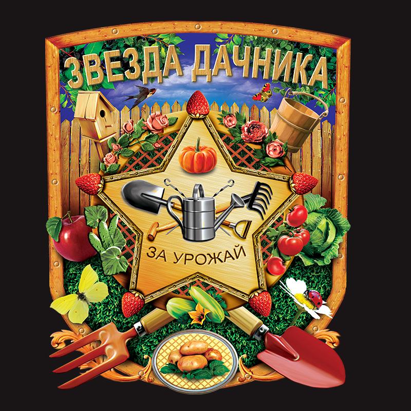 """Черная футболка """"Звезда дачника"""" с авторским принтом"""