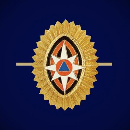 Кокарда МЧС офицерский состав, малая
