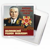 """Магнит """"Малиновский Р.Я."""""""