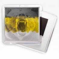 Магнитик «Имперский флаг с медведем»