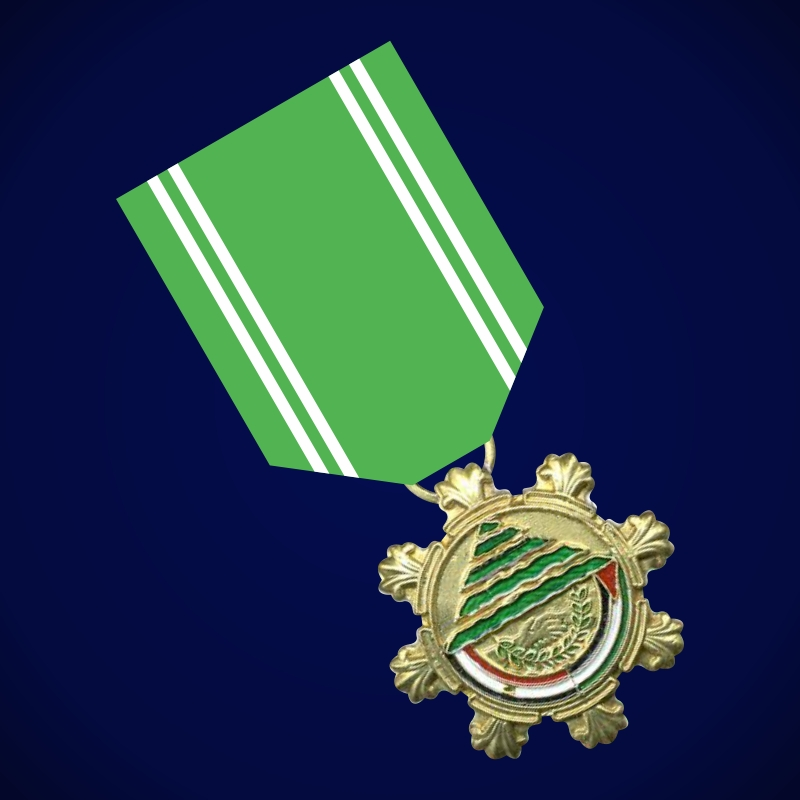 "Медаль ""За мир в Ливане"""
