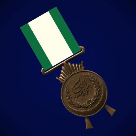 Медаль За службу (Ирак)