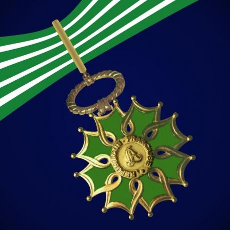 Орден Искусств и литературы 1 степени (Франция)