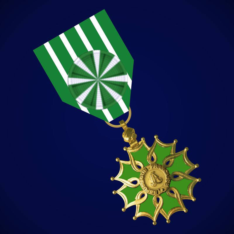 Орден Искусств и литературы (Франция) 2 степени