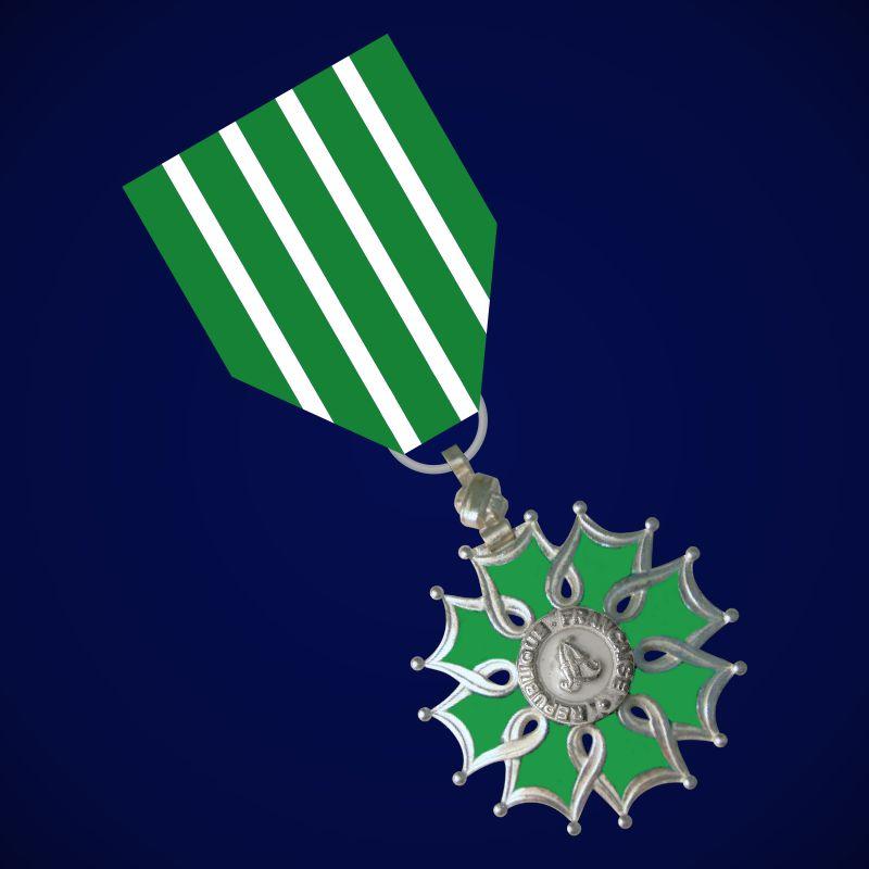 Орден Искусств и литературы (Франция) 3 степени