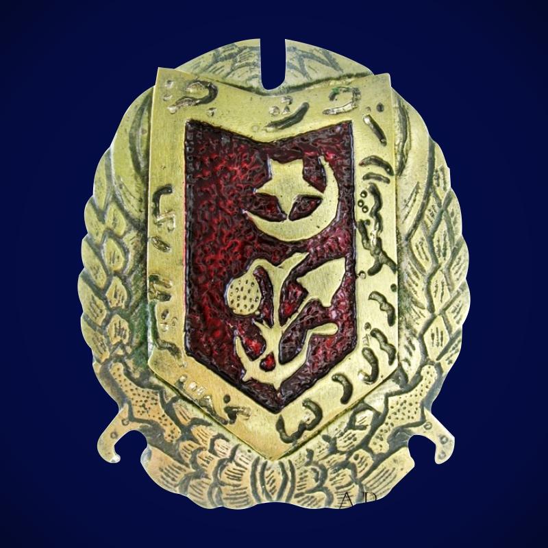 Военный Красный Орден Хорезмской НСР