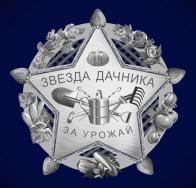 """Значок """"Звезда дачника"""""""